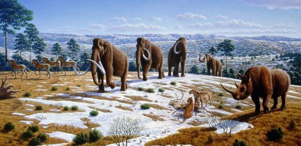 00636-ice_age_fauna_of_northern_spain_-_mauricio_anto25cc2581n