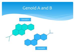 genoid A&B