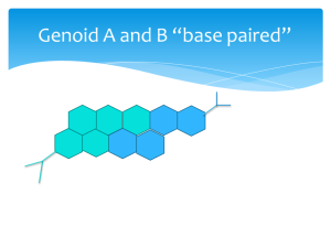 genoid base pair